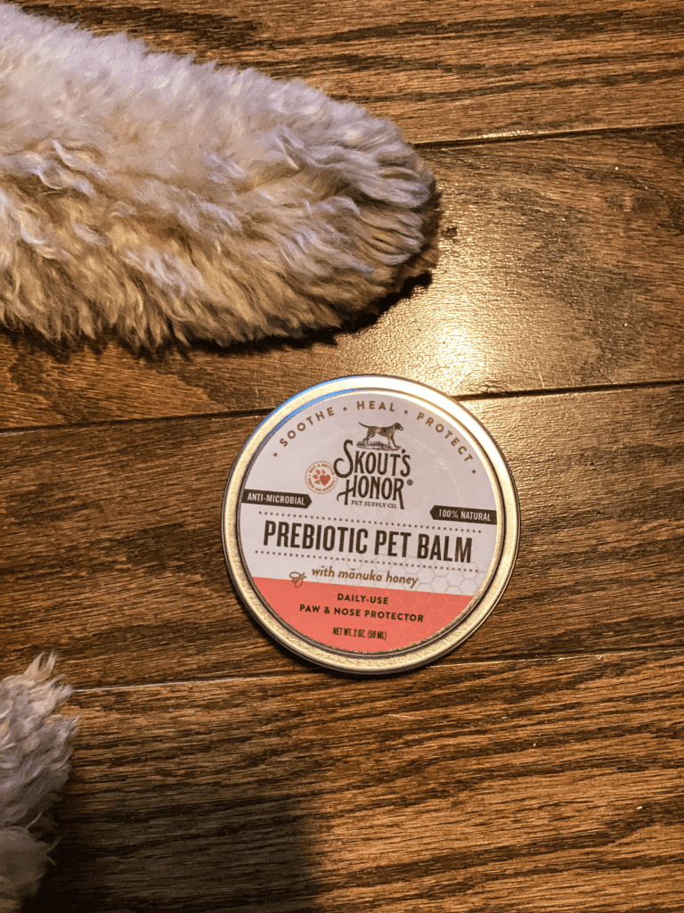 8 items you need in your home for your pet emergency kit