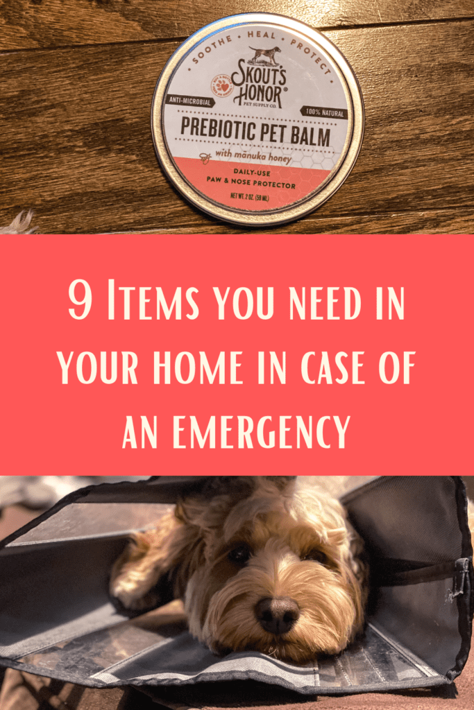 9 items you need in your home for your pet emergency kit