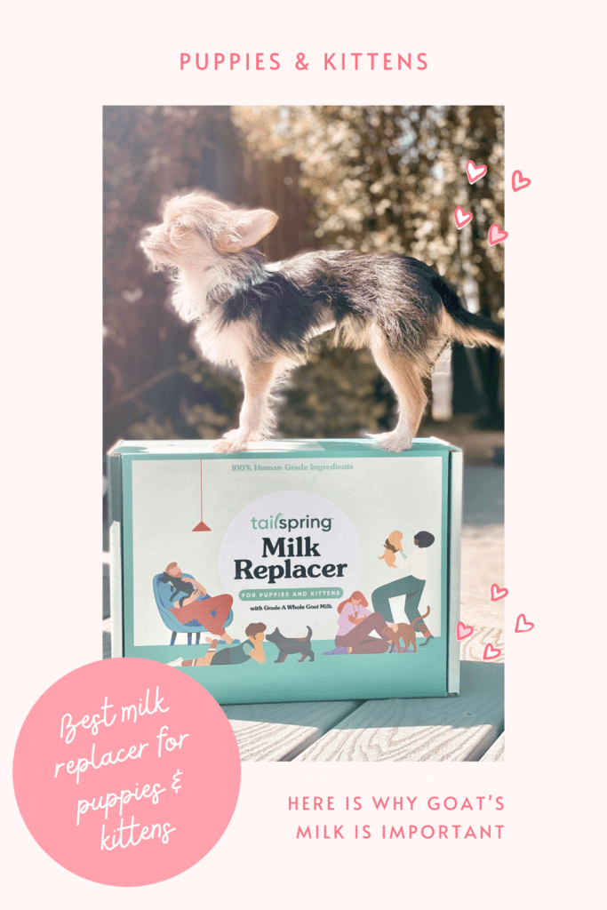 best milk replacer for puppies