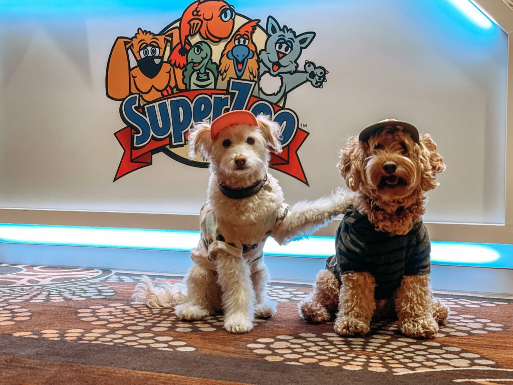Maggie and Rossi at Superzoo 2020